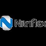 Nitriflex – Implantação HR 2.06 – Consultoria e Desenvolvimento